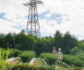 EVNNPT vận hành an toàn lưới điện phục vụ bầu cử
