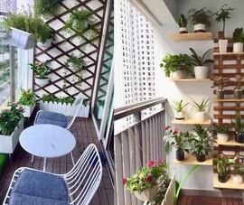 Thiết kế tiểu cảnh sân vườn căn hộ chung cư cao cấp