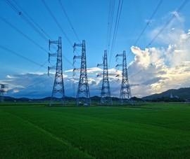 Đối mặt dịch COVID-19, EVNNPT đảm bảo tiến độ dự án điện