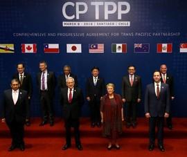 Đài Loan nộp đơn gia nhập Hiệp định CPTPP vài ngày sau Trung Quốc