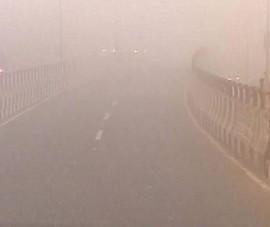 Đâm vào xe tải vì sương mù, 12 giáo viên thiệt mạng