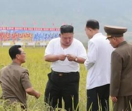 Triều Tiên tung bộ ảnh ông Kim khỏe mạnh đi thăm vùng lũ