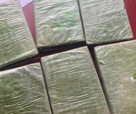Bị bắt sau khi mang 6 bánh heroin từ Điện Biên về Hải Phòng