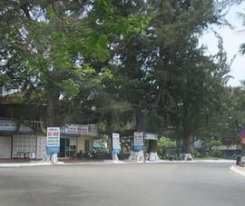 Hải Phòng tổ chức tuyến phố đi bộ tại Khu du lịch Đồ Sơn