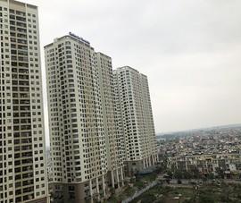 Lý do giá nhà, đất tăng bất chấp dịch COVID-19