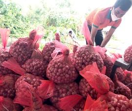 Đặc sản nổi tiếng Việt lên sàn, bán đắt như tôm tươi