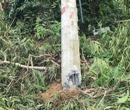 Điện lực Miền Trung nói về các cột điện bị gãy ở Huế