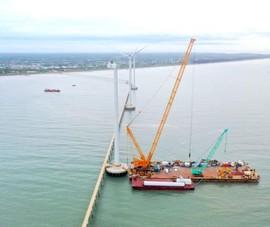 Trà Vinh có 5 dự án điện gió chuẩn bị hòa lưới điện Quốc gia