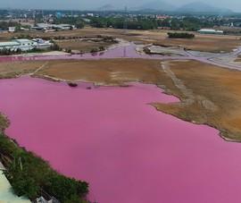 Bà Rịa-Vũng Tàu: Xử lý doanh nghiệp xả thải ra đầm nước