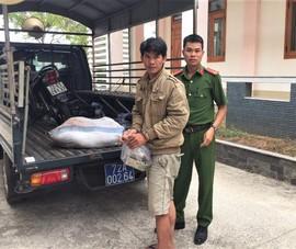 Bà Rịa- Vũng Tàu: Chủ nhà khống chế kẻ trộm chó giao công an