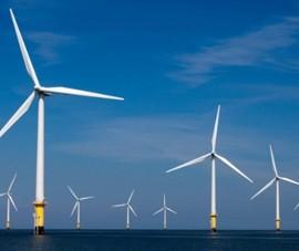 Dự án điện gió 1.000 ha ở Bà Rịa-Vũng Tàu giờ ra sao?