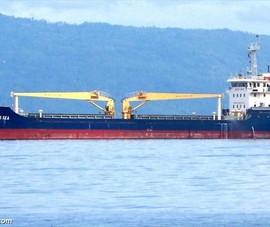 Bà Rịa - Vũng Tàu tiếp nhận thuyền viên tàu Đại Dương SEA