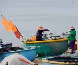 Ngư dân vùng xanh Bà Rịa- Vũng Tàu đi biển chuyến đầu tiên sau giãn cách