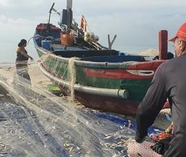 Ngư dân Vũng Tàu phấn khởi đi biển trở lại sau hơn 2 tháng giãn cách