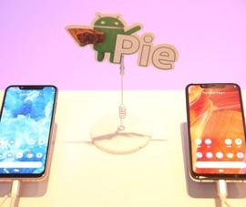 Nokia 8.1 được chính thức lên kệ tại Việt Nam