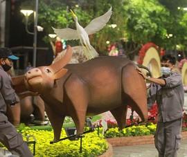 Cận cảnh công nhân dọn dẹp đường hoa Nguyễn Huệ