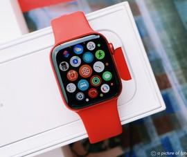 Apple Watch Series 6 và Apple SE 'cháy hàng' trong ngày mở bán