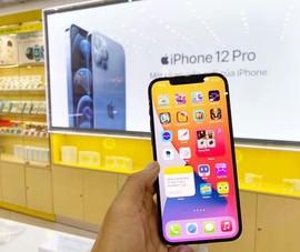 iPhone 12 series giá chỉ từ 13,5 triệu đồng