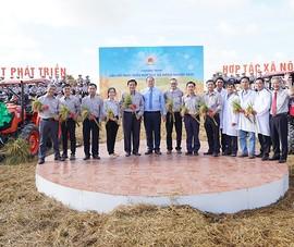 Tập đoàn Lộc Trời: chuỗi liên kết HTX nông nghiệp kiểu mới