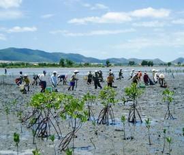 Kỳ vọng sẽ giải quyết triệt để các vấn đề môi trường