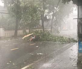 1 chuyên viên phòng GD&ĐT tử vong do bão số 5