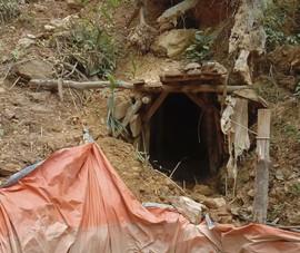 Khoảng 30 người vào rừng ở Huế dựng lán đào vàng