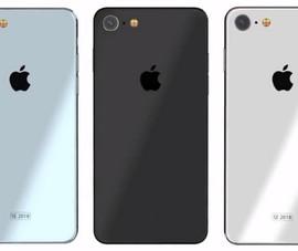 iPhone SE 2 sẽ có mặt lưng bằng kính?