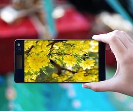 2 cách mang không khí Tết lên smartphone