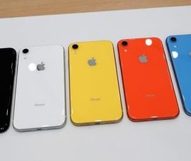 iPhone chính hãng bất ngờ giảm giá 2 triệu đồng