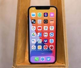 Người dùng iPhone nên cập nhật iOS 14.4 ngay lập tức