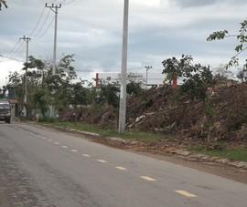 Video: Bãi rác cây xanh gây ô nhiễm giữa khu dân cư
