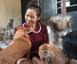 Video: Dành cả thanh xuân để chăm sóc chó, mèo