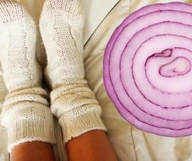 Hành tây có thể hút hết vi khuẩn có hại tấn công cơ thể
