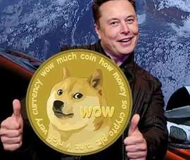 Giá đồng tiền 'con chó' tăng phi mã: vì sao?