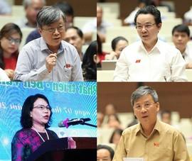 Chân dung 4 người tự ứng cử trúng cử đại biểu Quốc hội khóa XV