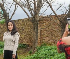 Video: Hàng cây sưa vàng rụng lá thu hút giới trẻ Đà Nẵng