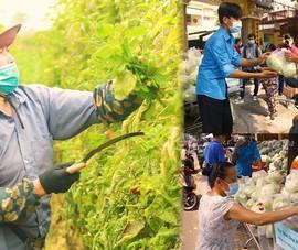 Video: Người Sài Gòn cấp tập giải cứu nông sản vùng dịch