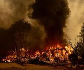 Nhóm lửa nấu nước làm cháy rừng, khả năng phải ngồi tù 9 năm