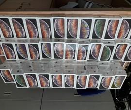Hơn 250 iPhone vận chuyển trái phép qua sân bay Tân Sơn Nhất