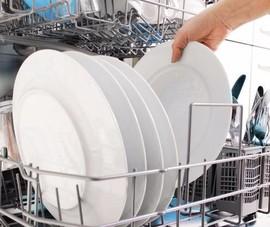 Nỗi lo nấm, vi khuẩn ẩn chứa trong chiếc máy rửa chén