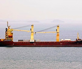 Bình Thuận: Tàu container tông chìm tàu cá có 8 thuyền viên