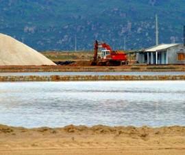 16 năm chưa giải quyết được đồng muối gây ô nhiễm