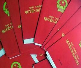 Truy tố cán bộ địa chính giao 8 sổ hồng của dân cho 'cò'