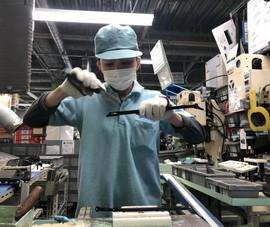 5 doanh nghiệp Việt bị ngừng đưa thực tập sinh sang Nhật