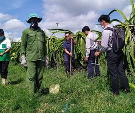 Hà Lan hỗ trợ nông dân Việt Nam xây dựng mô hình cây ăn trái kiểu mẫu