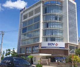 Bắt 5 cán bộ một chi nhánh ngân hàng ở Phú Yên