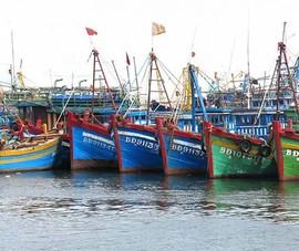 Đã liên lạc được 12 ngư dân sau nhiều ngày mất dấu