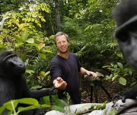 """Mất 10.000 USD vì khỉ chụp ảnh """"tự sướng"""""""
