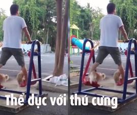 Clip tập thể dục với thú cưng