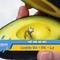 Video: Trào lưu cầu hôn bằng quả bơ gây sốt cộng đồng mạng
